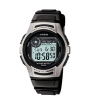 Picture of CASIO  W-213